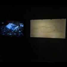 Fibrenamics da Universidade do Minho na Bienal de Veneza