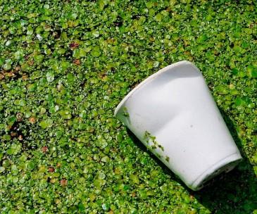Nova geração de materiais biodegradáveis