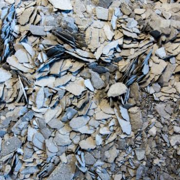 Newsletter nº2 - Valorização de Resíduos