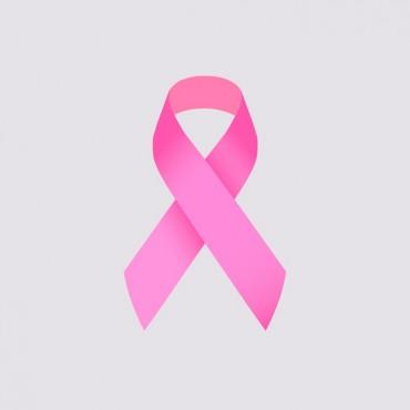 Newsletter nº4 - Fibras no combate ao Cancro da Mama