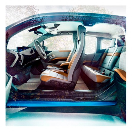 Potential of the Natural Fibers in the automotive industry